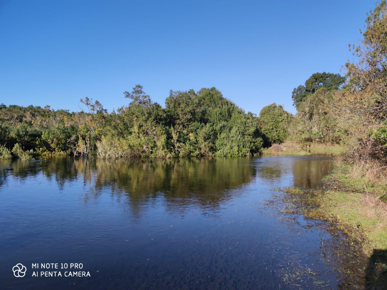 Se Vende parcela en Verde, Las Lomas, acceso a Rio Maullín, Puerto Varas.